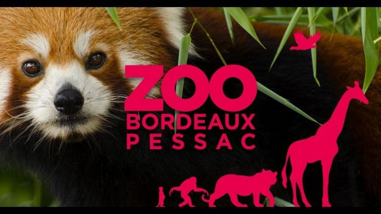 ZOO DE PESSAC